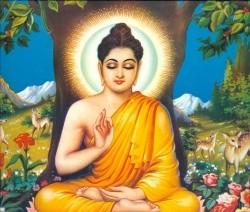Buddha Buddisht studies