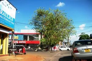 wijerama junction