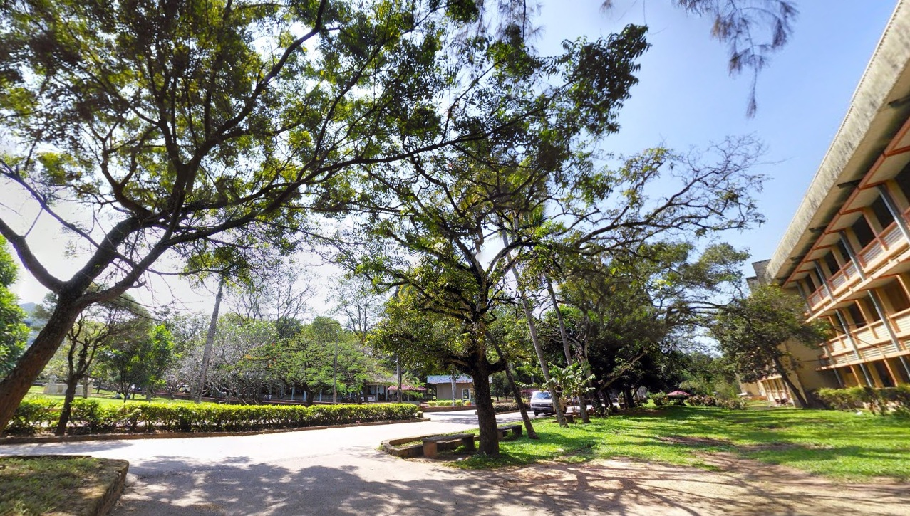 japura natural environment