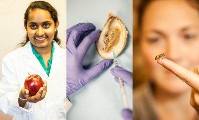 Wasundara breast cancer research