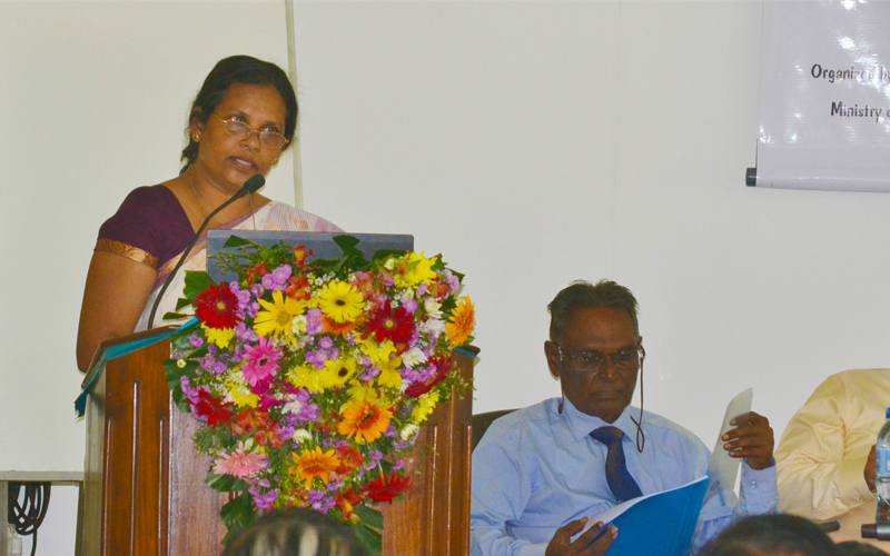 Dept of Public Administration join hands to improve productivity of public sector