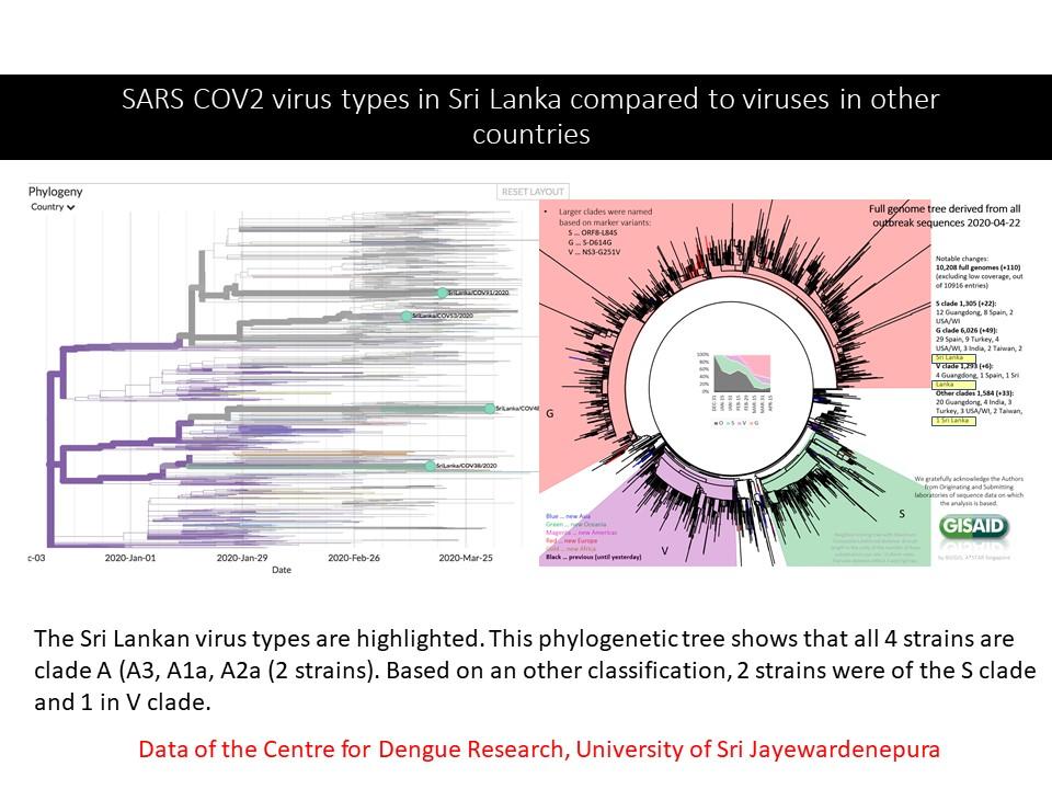 Covid virus types SL
